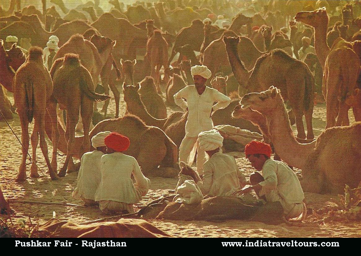 Pushkar Fair of Rajasthan